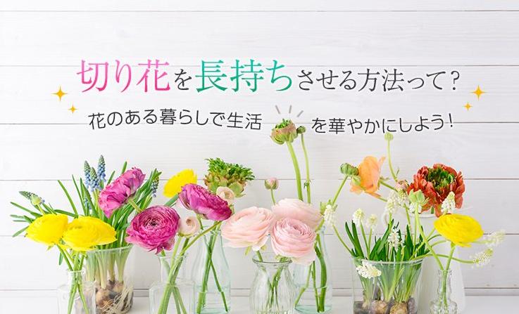 切り花を長持ちさせる方法,東急ベル,IENAKA,東京,自由が丘,フラワーアレンジメント教室,フラワードロップス