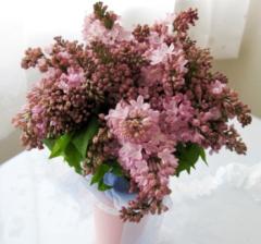 ライラックの花束|東京|自由が丘|フラワーアレンジメント教室|フラワードロップス