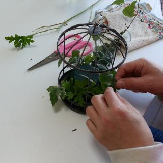 Flower DropsコースⅠの鳥かごアレンジの製作風景-鳥かごの底にセットしたオアシスにアイビーなど葉物を挿しているところ